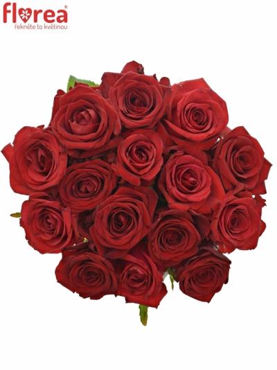 Kytice 15 míchaných růží JOANNA 55cm