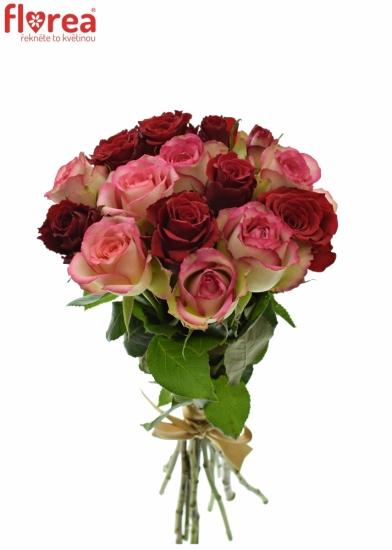 Kytice 15 míchaných růží ODETTE 40cm