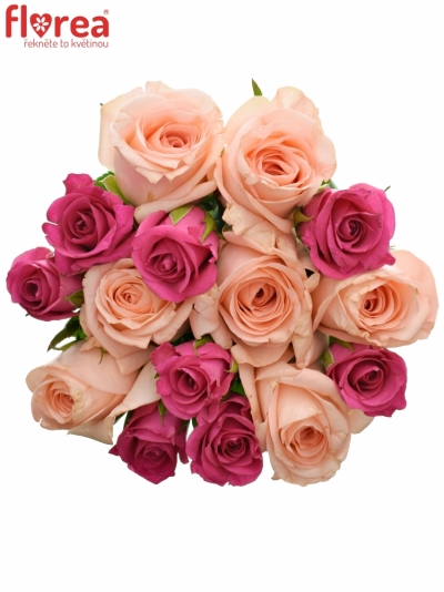 Kytice 15 míchaných růží PINACHE 40cm