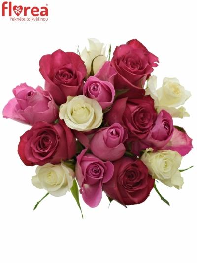 Kytice 15 míchaných růží PURPLE DANCE 40cm