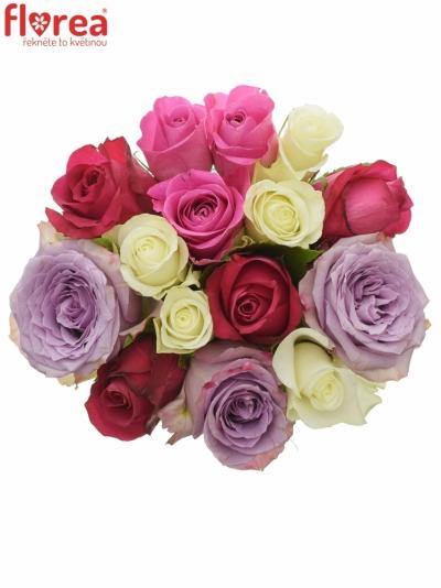 Kytice 15 míchaných růží PURPLE NAOMI 40cm