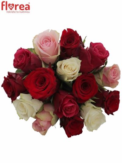 Kytice 15 míchaných růží RADWAN 40cm