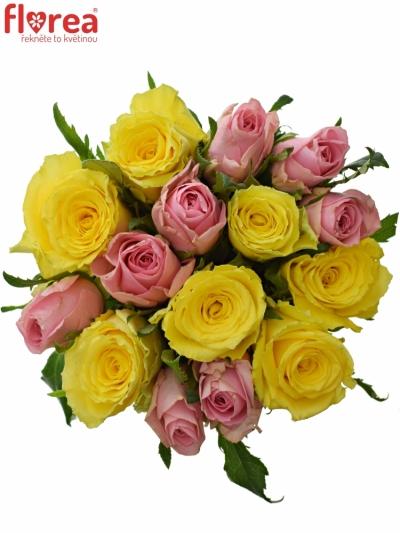 Kytice 15 míchaných růží SHANLEY 50cm