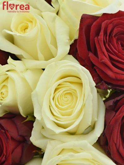 Kytice 15 míchaných růží THINA