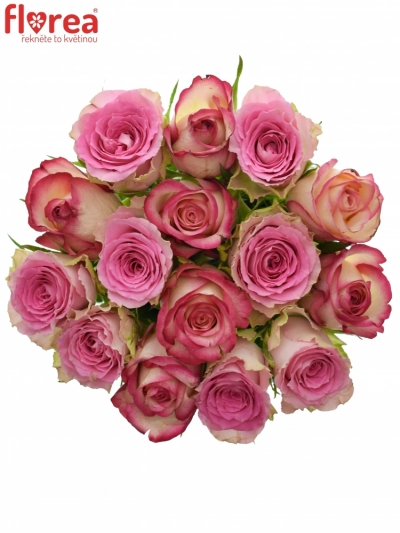 Kytice 15 míchaných růží TIMESTELLE