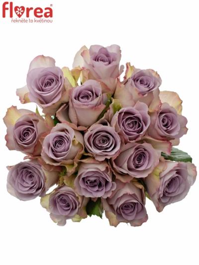 Kytice 15 modrofialových růží MEMORY LANE 40cm