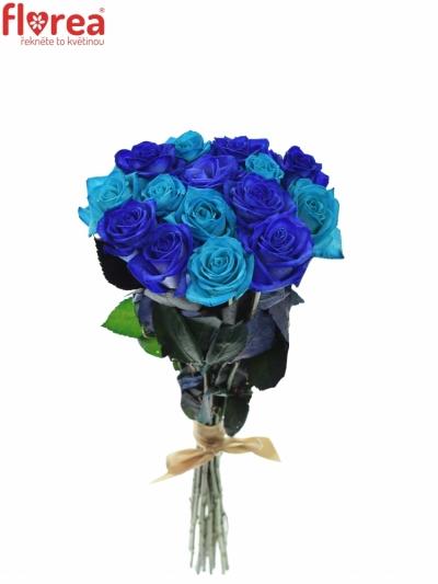 Kytice 15 modrých růží BLUE ADRIANA
