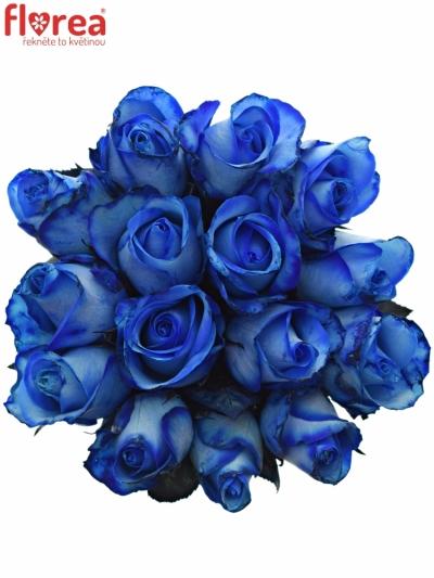 Kytice 15 modrých růží BLUE SNOWSTORM+ 50cm