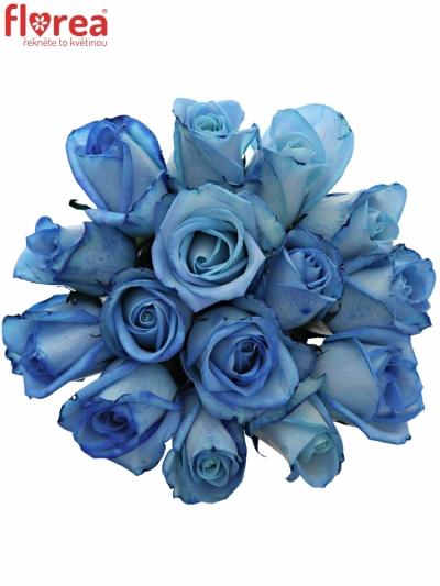 Kytice 15 modrých růží LIGHT BLUE SNOWSTORM