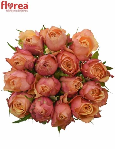 Kytice 15 oranžovočervených růží ALTAMODA 40cm
