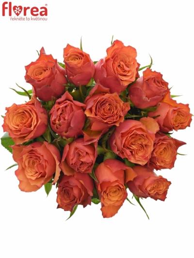Kytice 15 oranžových růží DEVOTED