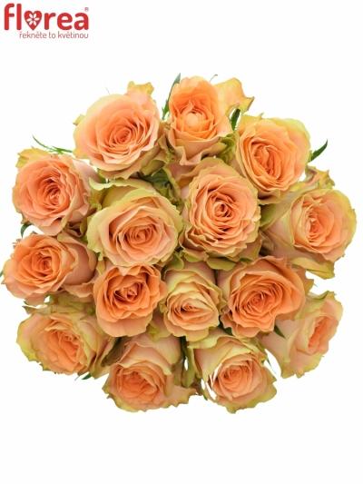Kytice 15 oranžových růží FLORENTINE