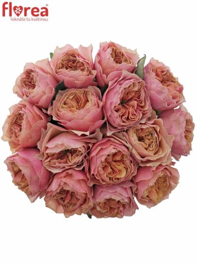 Kytice 15 oranžových růží KENSIN GARDENS! 35cm
