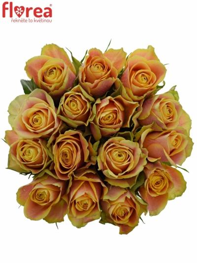 Kytice 15 oranžových růží MARACUJA 40cm