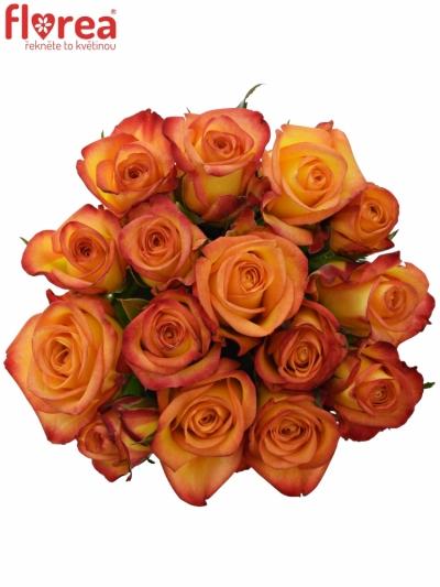 Kytice 15 oranžových růží OUTLAW! 50cm