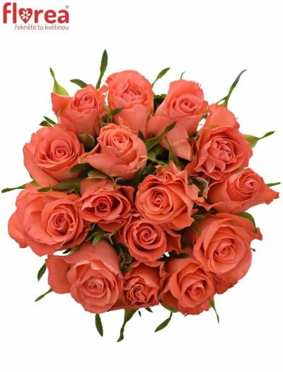 Kytice 15 oranžových růží SIMBA 50cm