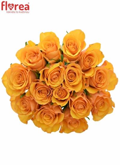 Kytice 15 oranžových růží TYCOON