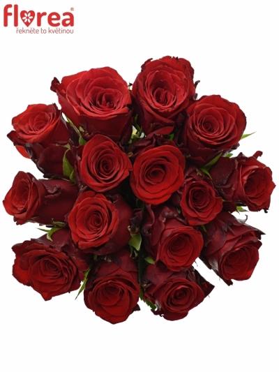 Kytice 15 rudých růží INCREDIBLE 60cm