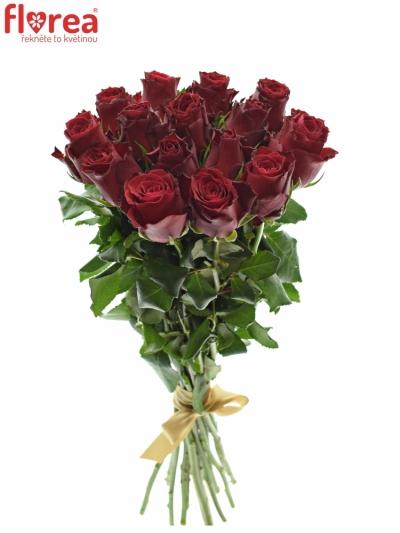 Kytice 15 rudých růží MADAM RED 40cm