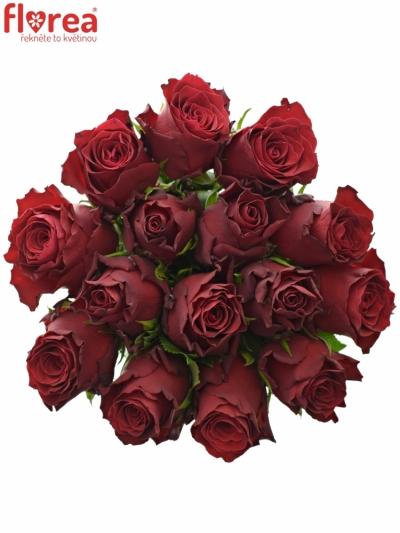 Kytice 15 rudých růží MADAM RED 70cm