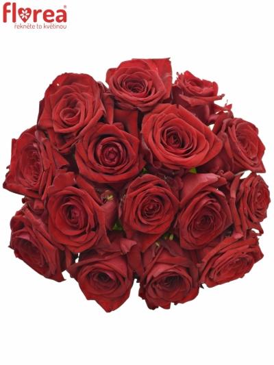Kytice 15 rudých růží RED NAOMI! 30cm