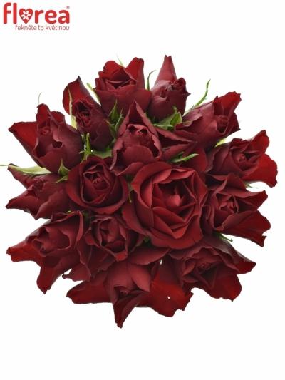 Kytice 15 rudých růží RED TIFFANY