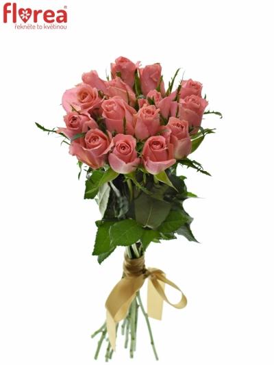 Kytice 15 růžových růží ACE PINK 50cm