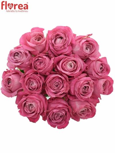Kytice 15 růžových růží ALL 4 LOVE+