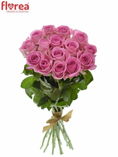 Kytice 15 růžových růží AQUA 55cm