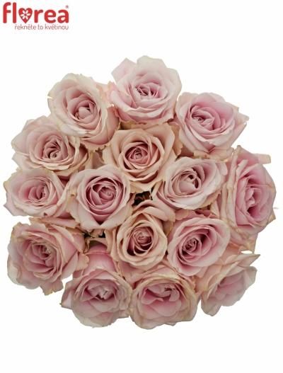 Kytice 15 růžových růží AVALANCHE PINK+ 90cm
