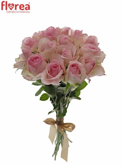Kytice 15 růžových růží AVALANCHE SORBET+