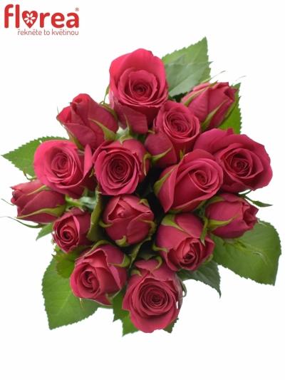 Kytice 15 růžových růží FUCHSIANA 70cm