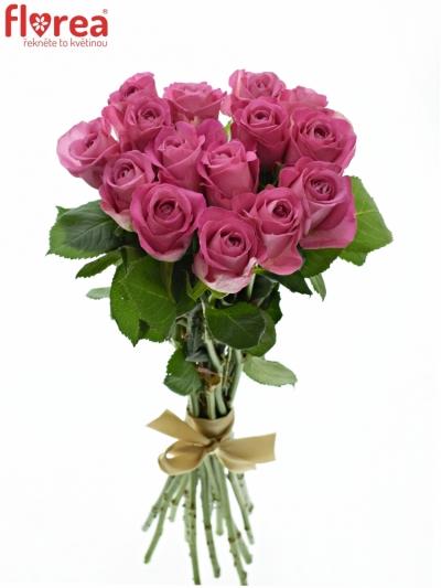 Kytice 15 růžových růží H3O 40cm