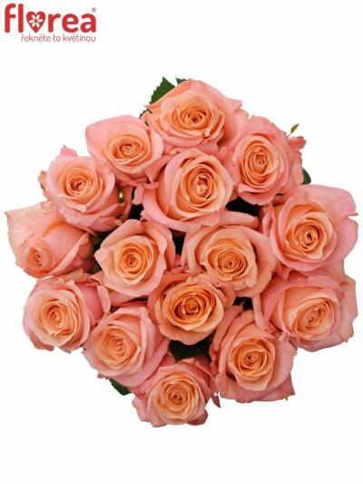 Kytice 15 růžových růží LADY MARGERAT 70cm
