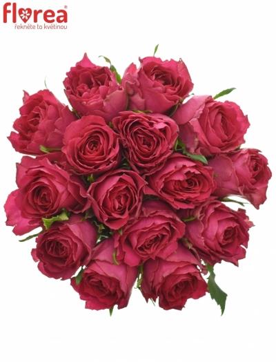 Kytice 15 růžových růží MADAM CERISE