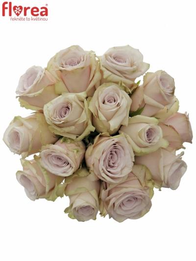Kytice 15 světle fialových růží SILVERY FLAME 35cm