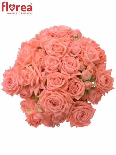 Kytice 15 trsových růží BARBADOS 50cm