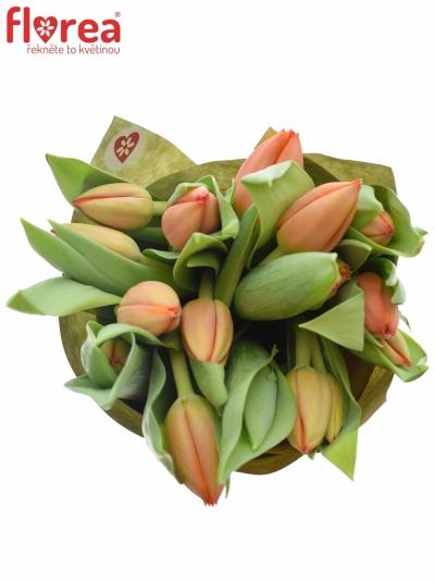 Kytice 15 tulipánů AD REM 40cm-papír