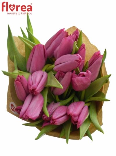 Kytice 15 tulipánů SWEET ROSY 40cm-papír