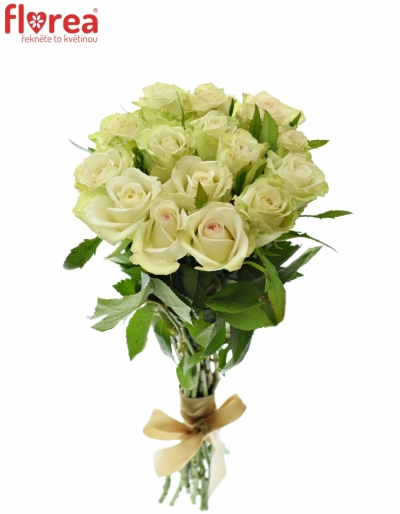 Kytice 15 zelených růží GREEN FASHION