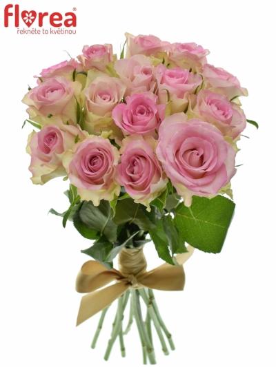 Kytice 15 žíhaných růží LOVELY JEWEL 40cm