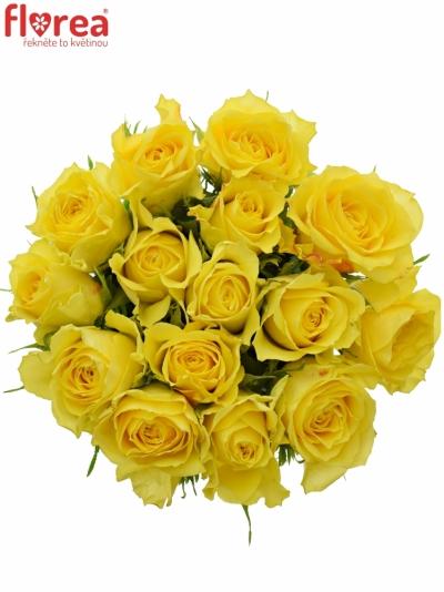 Kytice 15 žlutých růží GOLDEN TOWER 50 cm