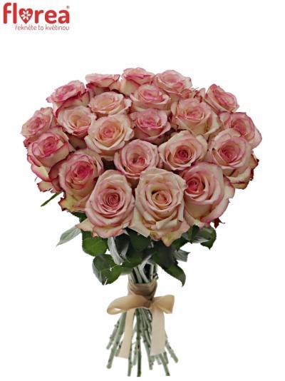 Kytice 21 bÍlorůžových růží TORMENTA