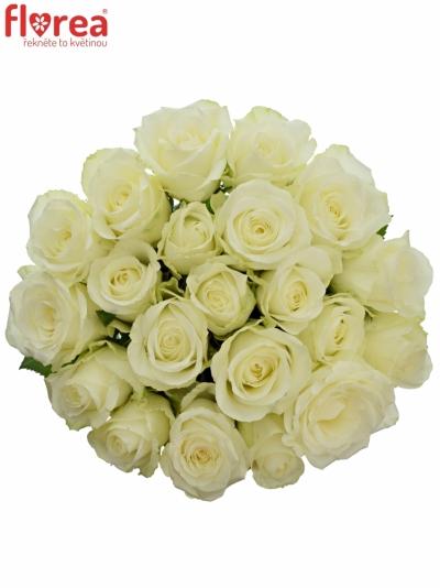 Kytice 21 bílých růží COUNTDOWN