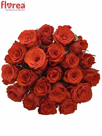 Kytice 21 červených růží BRIGHT TORCH