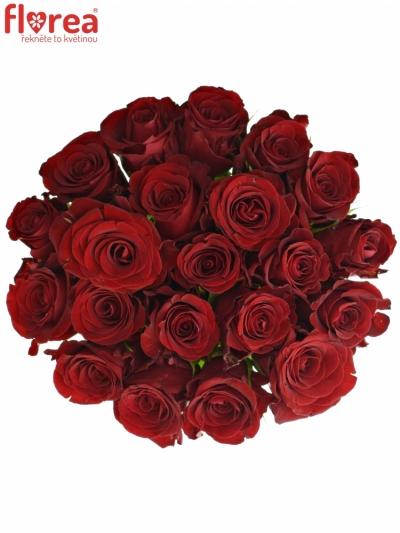 Kytice 21 červených růží MILLION REASONS