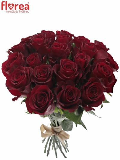 Kytice 21 červených růží NAZCA 90cm