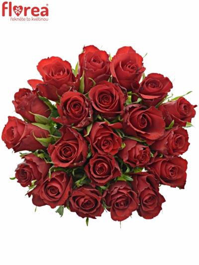 Kytice 21 červených růží RED CALYPSO 60cm