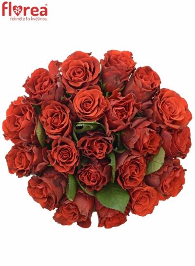 Kytice 21 červených růží RED CORVETTE