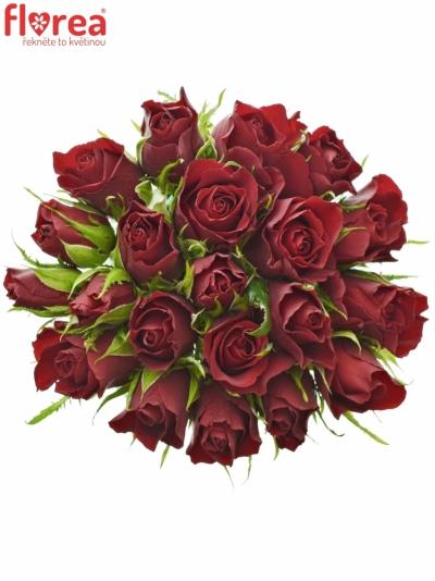 Kytice 21 červených růží VALENTINO 40cm